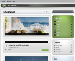 multimedia tumblr template 300x246 Website Clones and Templates
