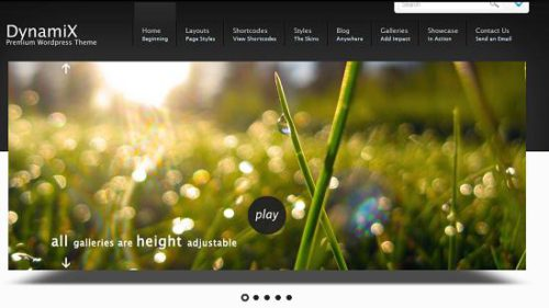 dyanimx themeforest wordpress How to Create a Simple and Elegant Website with Wordpress