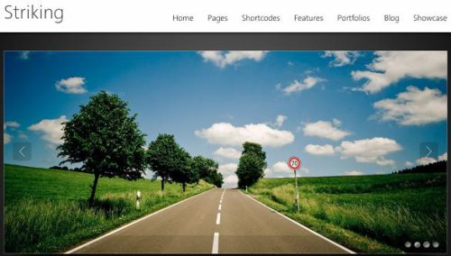 striker themeforest How to Create a Simple and Elegant Website with Wordpress