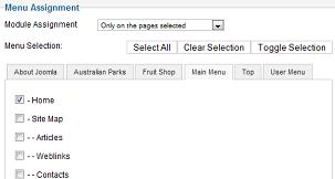 Joomla Google Adsense to show only on the frontpage