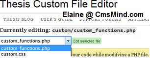 Edit Thesis custom_functions.php