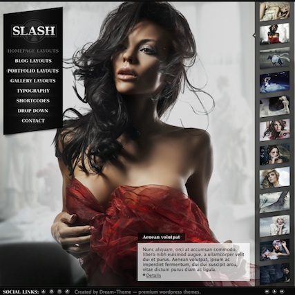 Wordpress Photography Template - Slash