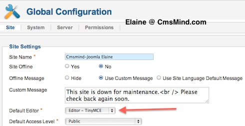 cmsmind elaine joomla 173 default editor global config 0 Joomla 1.7.3 Tutorial   How to Enable the Extended Tiny MCE Editor
