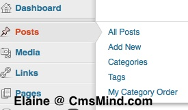 cmsmind wordpress fly out nav menus 7 A Review of Wordpress 3.3 Changes so far...