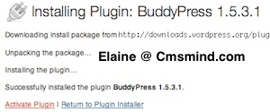 Activate BuddyPress Plugin