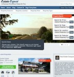 Click to visit Real Estate Expert MLS Theme