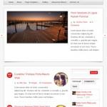 Blog/Journal Momentum Theme