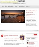 Click to visit Blog Momentum Theme
