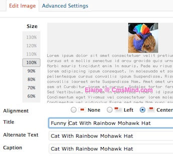 Title, ALT and Caption information for Images to Maximize SEO