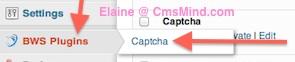 Wordpress Plugins - CLick on BWS Plugins CAPTCHA