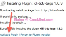 cmsmind elaine wordpress plugin tags xili tidy tags 3 Free Wordpress Plugin   Help Manage Wordpress Tags   Xili Tidy Tags