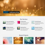 joomla 2 5 template photography portfolio lifestyle 150x150 Website Clones and Templates