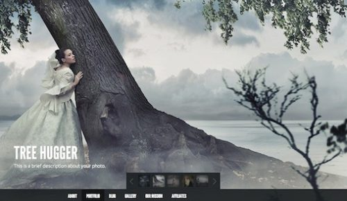 wordpress photography portfolio template gleam 3 Cost to Create an Amazing Photography Website with Wordpress Theme   Gleam