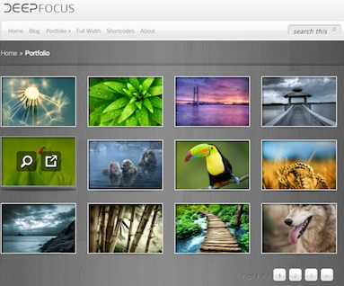 Wordpress Theme - Deep Focus Photo Gallery