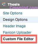 Wordpress Thesis Custom File Editor