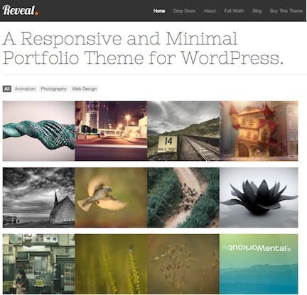 wordpress responsive portfolio theme reveal 1 Website Clones and Templates