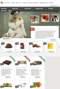 Click to visit eCommerce Wordpress Theme