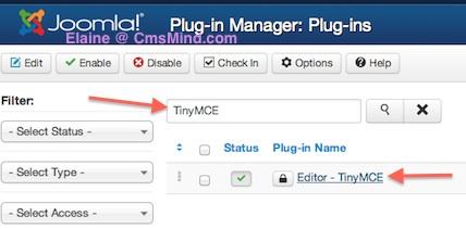 Joomla 3.0 Tiny MCE Editor
