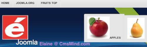 joomla 3 0 tutorial how to add image to menu sub menus 5 Joomla 3.0 Tutorial   How to Add Images to Menus