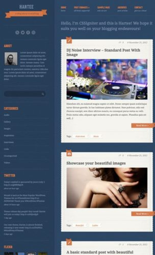responsive tumblr clone wordpress theme hartee Best Photography Themes