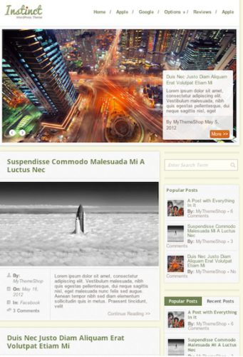 responsive unique blog wordpress theme instinct Cost to Make a Blog Website with Wordpress Theme Instinct