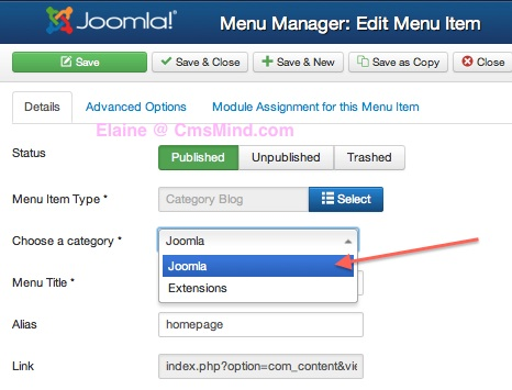 joomla 3 set menu item show articles from category blog style 3 Joomla 3.0   How to Set Menu Item to Show Articles in Category Blog