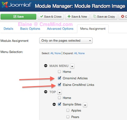 joomla 3 show module on selected pages not on homepage 4 Joomla 3.0   How to Publish Modules on Selected Pages