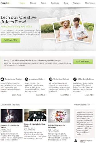 Responsive Business WordPress Theme - Avada