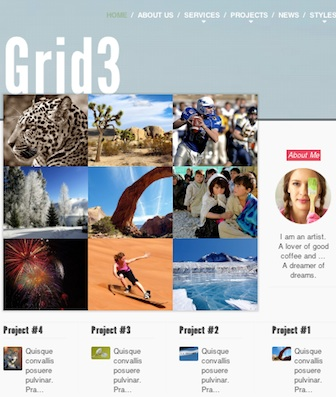 Responsive Portfolio Photography Joomla 3 template grid3 Cost to Make a Responsive Portfolio Website with Joomla 3.0 Template   Grid3