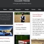 Click to visit Free Responsive Tumblr Like Site with Infinite Scrolling Wordpress Theme - Gallery