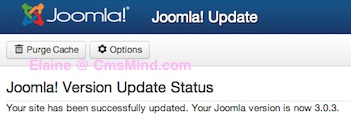 Joomla 3.0.3 Successfully Updated