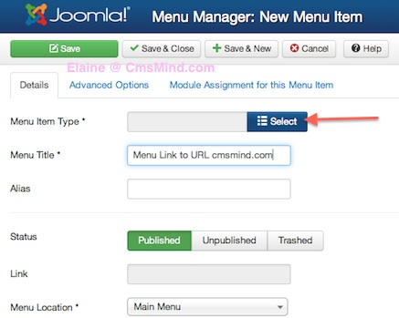 Joomla 3.0 How to Create Menu Link to URL - enter menu item details