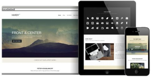 Features of Responsive Minimalistic Portfolio WordPress Theme - Hardy