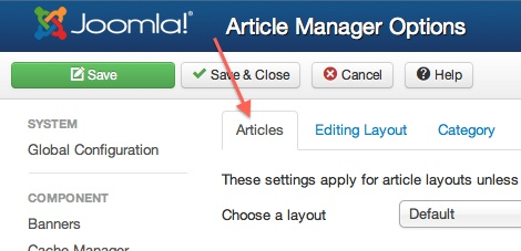Joomla 3.1.1 Article Manager Options Article Tab