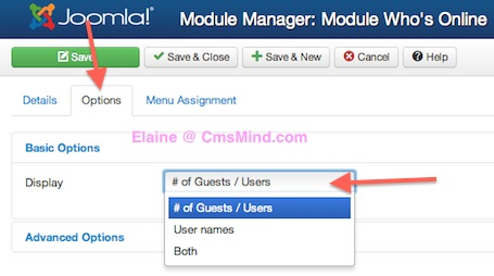 Joomla 3 Module Manager Who's Online options