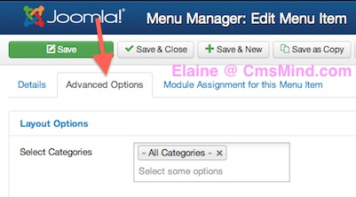 Joomla 3.1.1 Tutorial Menu Manager Advanced options