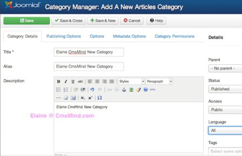 Joomla 3 Category Manager New Category Details