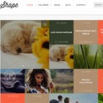 Click to visit Minimalistic Professional Photography Wordpress Theme - Shape