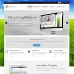 Click to visit Business Portfolio Wordpress Theme - Brilliance