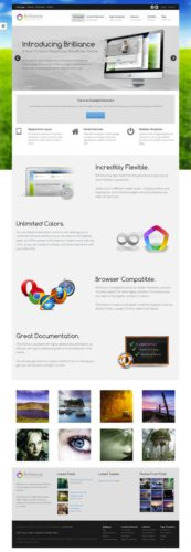 responsive professional business portfolio wordpres theme brilliance Cost to Create a Professional Business Portfolio with Wordpress Theme   Brilliance
