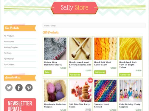 Sally Store Ecommerce WordPress Theme Bluchic