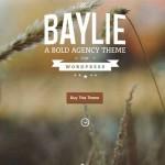 Thumbnail image for Responsive Multi-Purpose Parallax WordPress Theme – Baylie