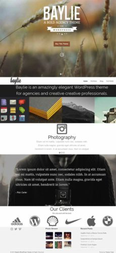 Baylie Responsive Parallax WordPress Theme Best Business Themes