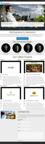 Business Template WordPress Theme - Business Theme