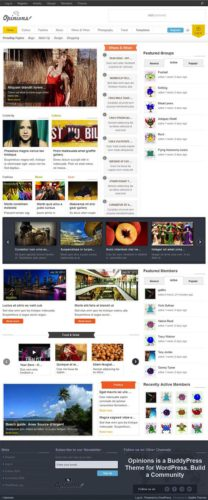 Facebook Clone Social Networking WordPress Theme Opinions