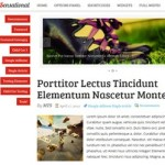 Thumbnail image for Create a Magazine Site with Colourful Magazine WordPress Theme Sensational