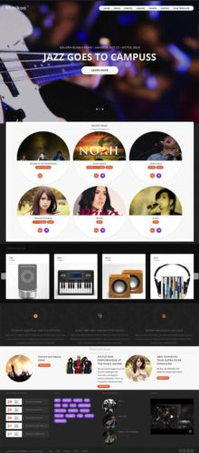 Responsive Musikoo Music Band Wordpress Theme Tokokoo Responsive Wordpress Theme for Music Bands   Musikoo