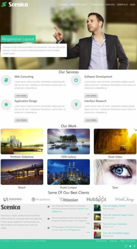 Scenica WordPress Theme Elegant Business Template Elegant Wordpress Business Template   Scenica