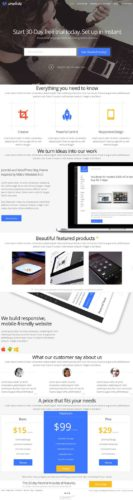 Professional Business WordPress Theme - Simplicity