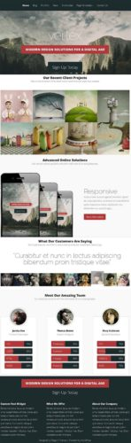 Responsive Business WordPress Theme - Vertex